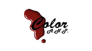 Color A.N.P. s.r.o. - lakování aut