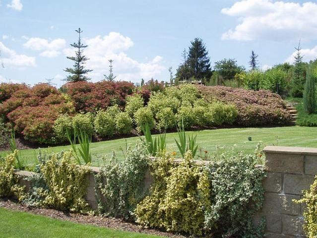 COVENANT zahrady a parky s.r.o. - fotografie 9/15