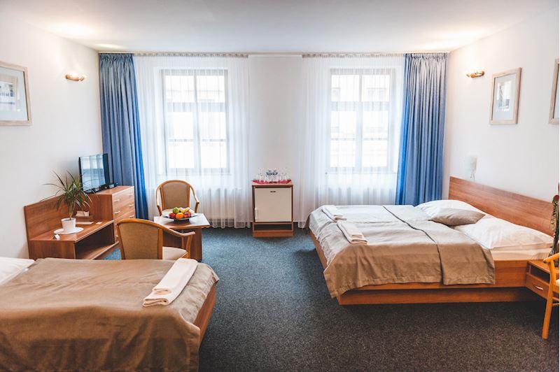 Hotel U České koruny - fotografie 8/15