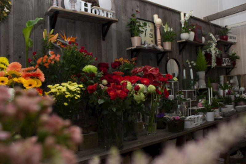 Květinové studio Petronila - fotografie 2/20