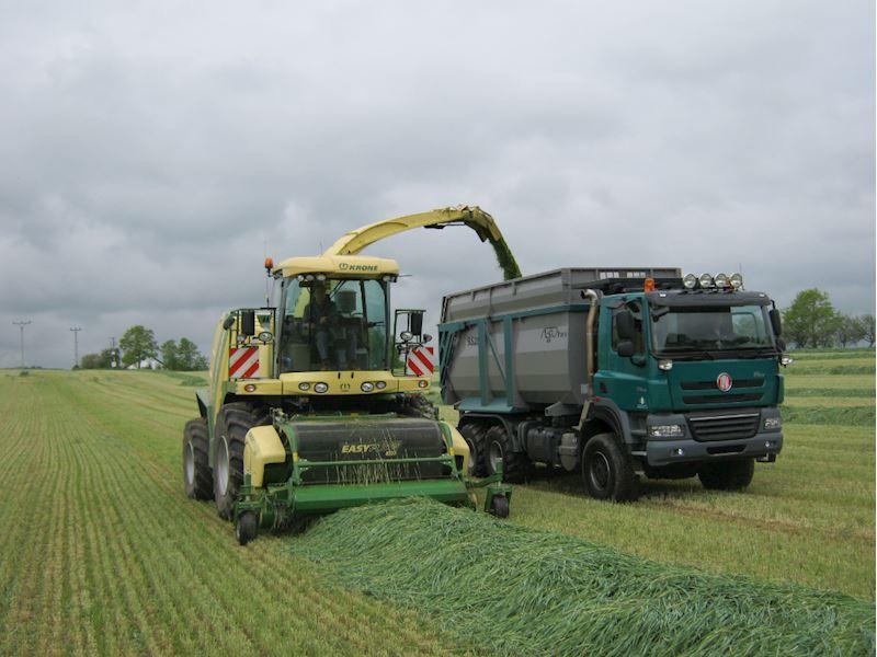 Zemědělská společnost Kosova Hora, a.s. - zemědělská výroba - fotografie 9/20
