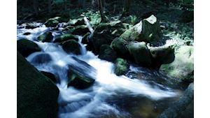 Vodopády Sv. Wolfganga - 7 km
