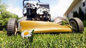 Prodej a servis zahradní techniky - Žižka František