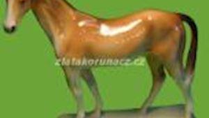 Numismatika Zlatá Koruna - ROMAN REPKA - profilová fotografie