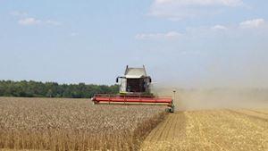 Zemědělské družstvo Hodonice č.p. 258, družstvo - profilová fotografie
