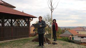 Libčany - obecní úřad - profilová fotografie