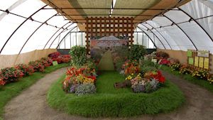Tradiční výstava květin Čimelice 2017