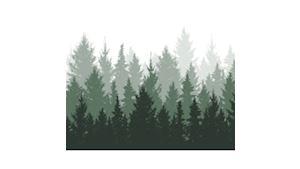 Lesní společnost Prylovi s.r.o.