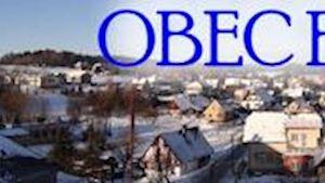 Borovnice - obecní úřad