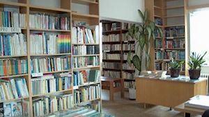 Zličínská knihovna