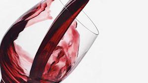 Gallery Winery Máneska
