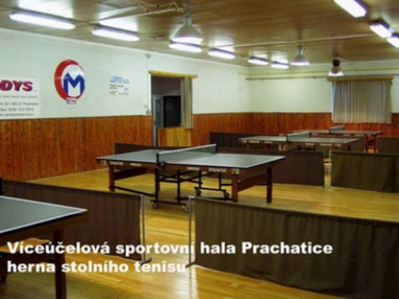 Sportovní zařízení Prachatice, p.o. - fotografie 6/11