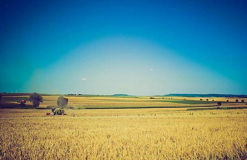 Bílovská zemědělská a.s. - fotografie 7/14