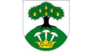 Obec Stašov