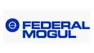 FEDERAL - Mogul Friction a.s.