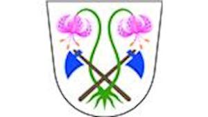 Obec Vápenice