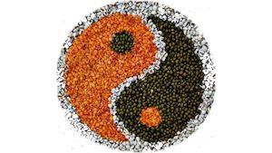 Eruvia - tradiční čínská medicína