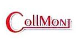 Collmont - rekonstrukce staveb