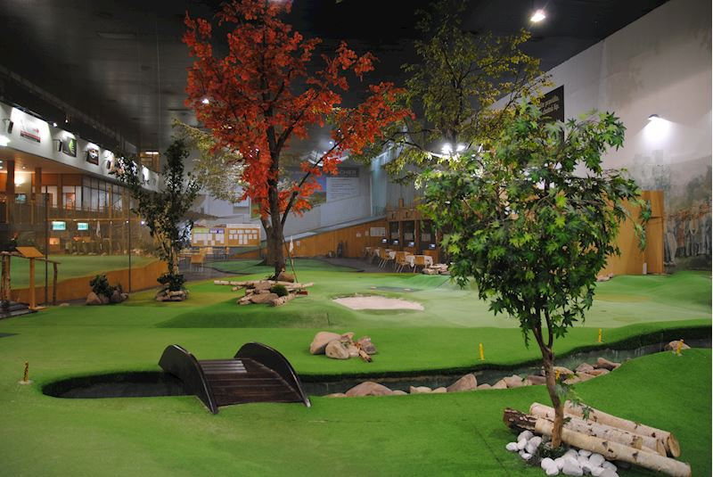 Indoor Golf Erpet