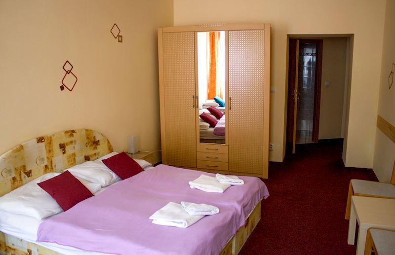 Hotel Jizera Karlovy Vary s.r.o. - fotografie 9/10