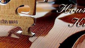 Kužel Jan - mistr houslař