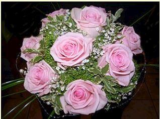 CATTLEYA - velkoobchod květin a bytové dekorace - fotografie 9/19