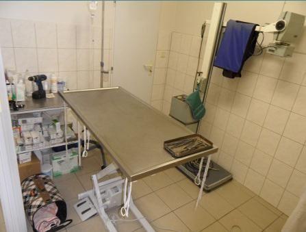 Veterinární ordinace - MVDr. Petr Vymazal - fotografie 7/15