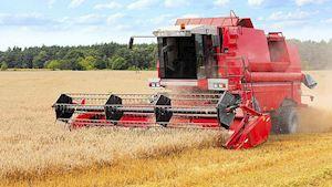 Zemědělská akciová společnost Koloveč - profilová fotografie