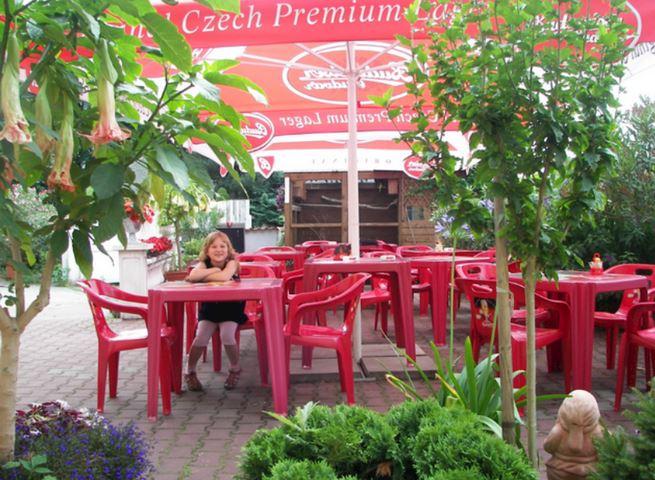 Hotel a restaurace Pod Břízami** - fotografie 9/21