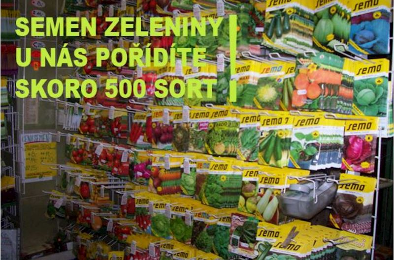 Heřman HAVELKA - Zahrádkář - fotografie 4/20