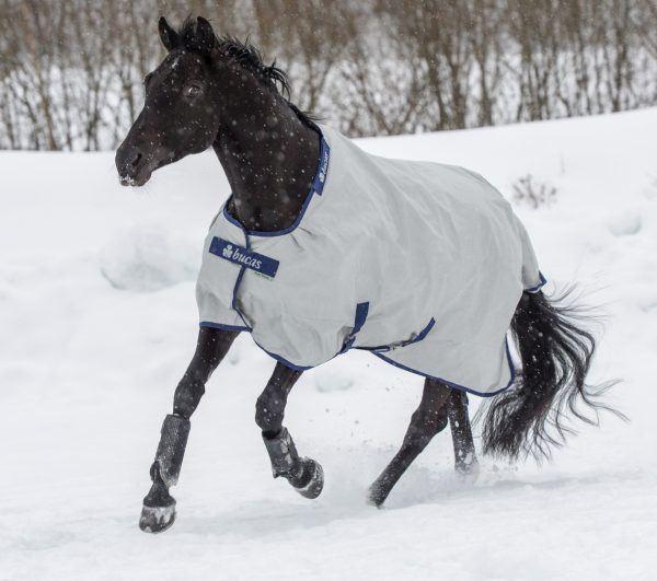 Equitime - Jezdecké potřeby pro Vás a Vaše koně - fotografie 9/10