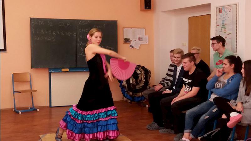 Obchodní akademie a Vyšší odborná škola sociální, Ostrava - Mariánské Hory - fotografie 11/11