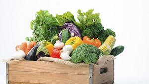 Východočeská zelenina - družstvo producentů zeleniny