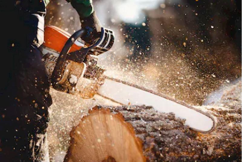 PILANA dřevařská výroba - spol. s r.o. - fotografie 2/4