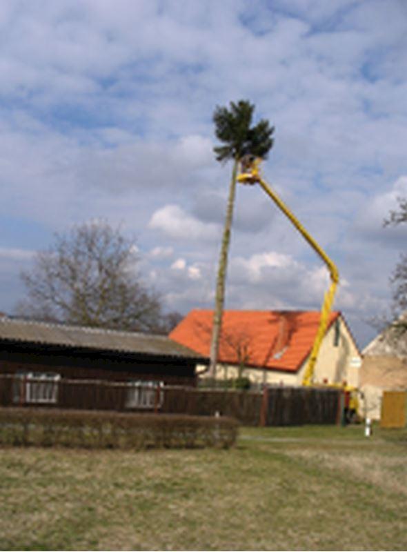 Elektroslužba - Staněk Václav - fotografie 3/5