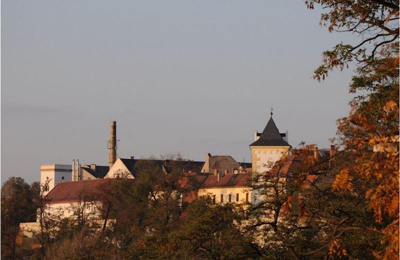 Městský úřad Žatec  - Město Žatec - fotografie 14/15