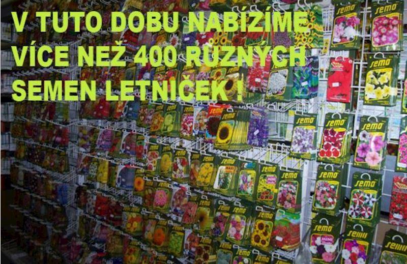 Heřman HAVELKA - Zahrádkář - fotografie 3/20
