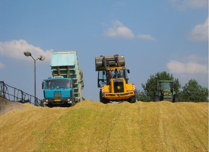Zemědělská společnost Kosova Hora, a.s. - zemědělská výroba - fotografie 12/20