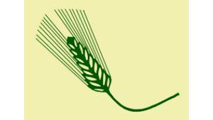 Zemědělská akciová společnost Koloveč