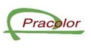 PRACOLOR s.r.o.