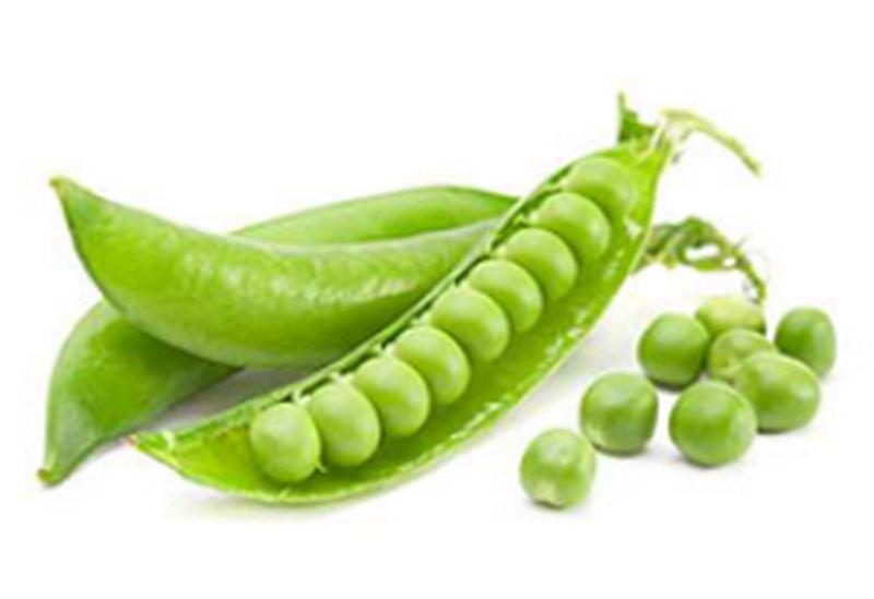 HMH, spol. s r.o. - zelenina - fotografie 9/10
