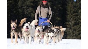 Výlet se psy - Mushing