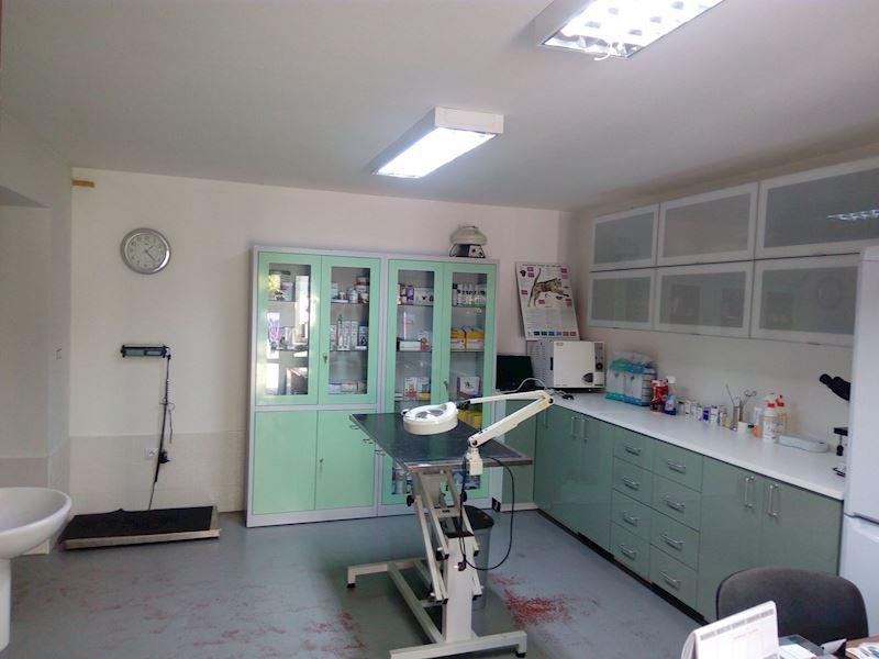 MVDr. Jan Musil - veterinární ambulance - fotografie 6/7
