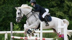 Bučková Kateřina MVDr. - komplexní ošetření koní