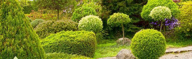 COVENANT zahrady a parky s.r.o. - fotografie 1/15