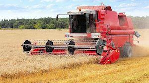 Zemědělská výroba - Král Jan