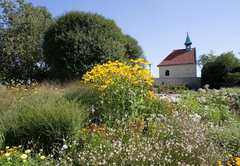 Botanická zahrada Praha - fotografie 15/25