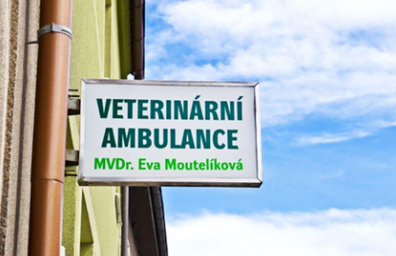 Veterinární praxe - MVDr. Eva Moutelíková - fotografie 3/8