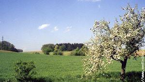 Sedlnice - obecní úřad - profilová fotografie