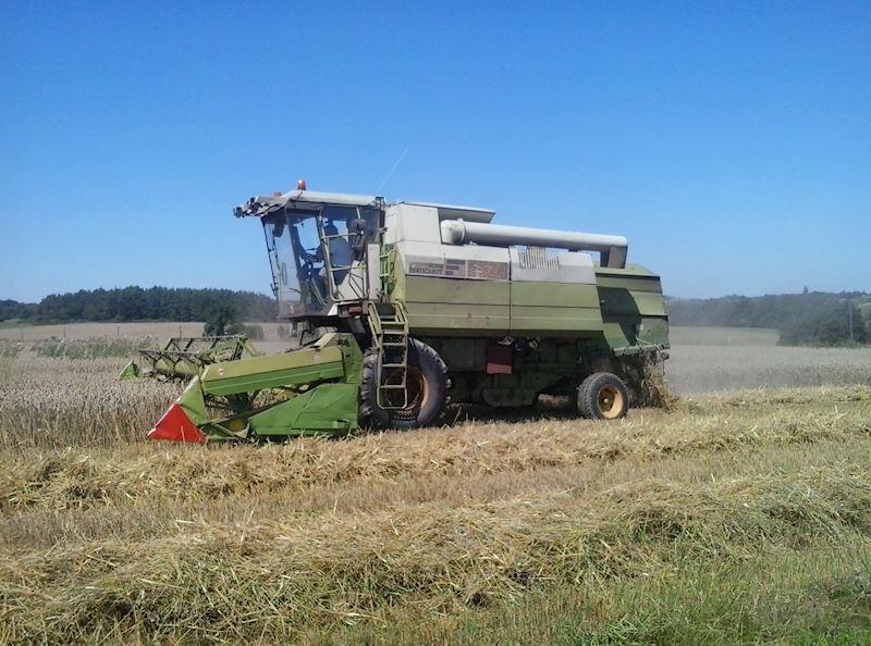 Zemědělská společnost Kosova Hora, a.s. - zemědělská výroba - fotografie 11/20
